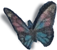 impressions choice support butterfly